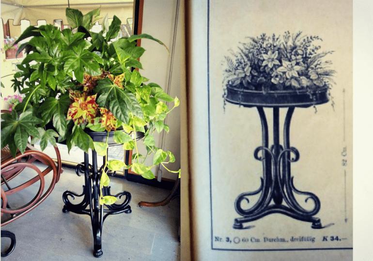 Thonet-flower-stand-restauration